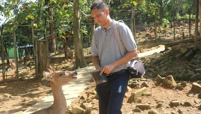 Libur Akhir Pekan: Ayo Main Bareng Rusa di Kotabaru, Kalsel