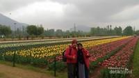 Keindahan Indira Gandhi Memorial Tulip Garden dengan 53 jenis tulip berwarna warni