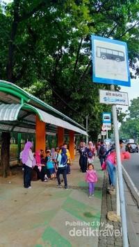 Penumpang bisa naik dan turun di halte yang telah disediakan