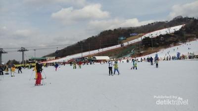Serunya Bermain Ski di Vivaldi Park, Korea Selatan