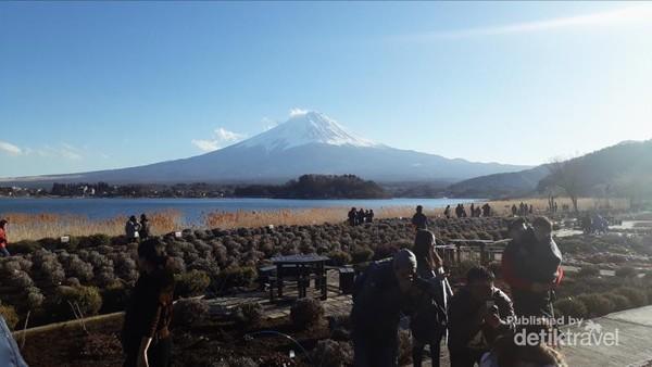 Tepi Danau Kawaguchi