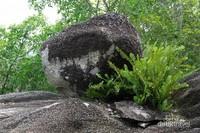 Batu-batu granit ini merupakan bukti kuasa Tuhan. Manusia mana bisa mengangkatnya?