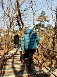 Tangga yang mempermudah selama trekking menuju puncak Gunung Seorak