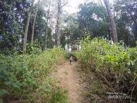 Butuh waktu sekitar 10 jam mendaki untuk menggapai puncak Gunung Tambora