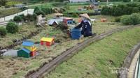 Staff yang sedang merawat dan membersihkan area taman miniatur kereta api