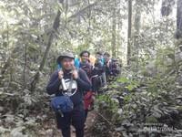 Tim pendaki memasuki kawasan hutan Kerinci yang lebat.