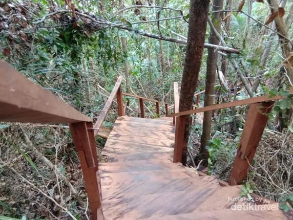 Tangga kayu untuk mencapai Puncak Dafalen Misool