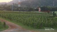Terdapat beberapa spot menarik di kawasan perkebunan anggur ini, antara lain adalah replika kincir angin Belanda