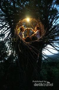 Terdapat spot sarang burung di atas pohon ditemani satu lampu yang membangun suasana romantis!