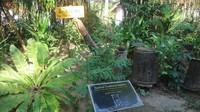 Sarang lebah buatan tradisional Thailand