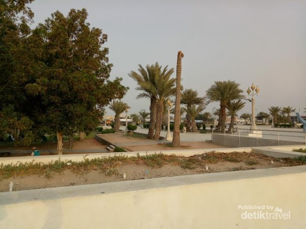 Taman ini cukup hijau walau terletak di daerah Arab Saudi yang terkenal gersang.