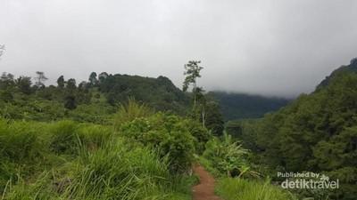 Berkunjung ke Suaka Elang di Bogor yang Jarang Orang Tahu