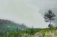 Pemandangan dari puncak Gunung Guntur. Terlihat perkemahan dari atas Puncak