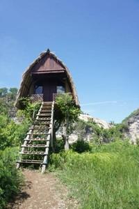 rumah pohon yang disewakan