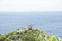 Bukit Batu Rumah pohon molenteng