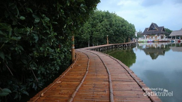Jelang sore, nikmati udara segar sambil trekking di hutan mangroove yang ada di kawasan Grand Maerokoco.