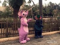 Karakter Stitch