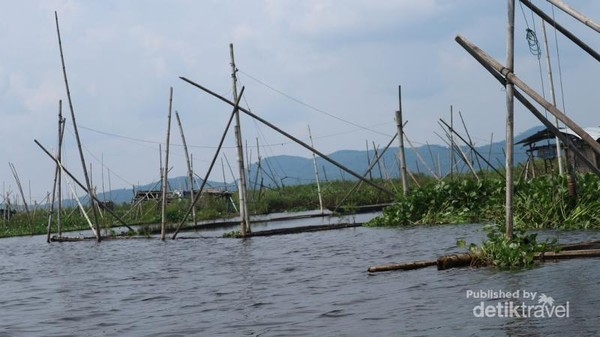 Terdapat banyak keramba yang ada di danau Rawa Pening milik warga sekitar