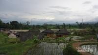 Kampung Budaya Padi Pandan Wangi di Cianjur