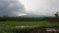 Sawah dan gunung di Kampung Budaya Padi Pandan Wangi