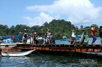 Puluhan ton ikan ditangkap setiap harinya