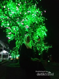 Under a glowing tree.