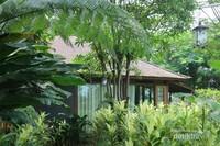 Villa dengan pepohonan dan taman yang rimbun dan menyegarkan