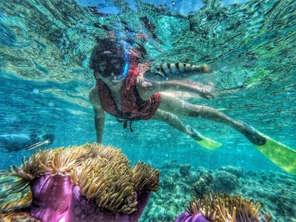 Snorkeling di lautan bebas
