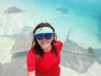 Stingray jinak mengajak main di tepi pantai pulau Fulidhoo