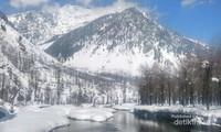 Sungai jernih mengalir diantara putihmya salju, Pahalgam