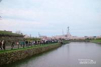 Masyarakat banyak yang berjalan santai menikmati bunga sakura.