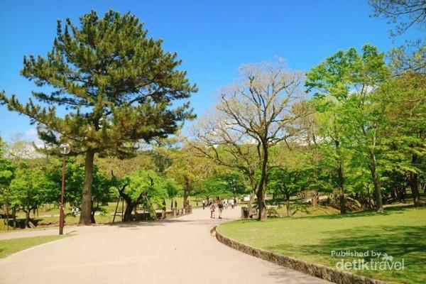 Jalan-jalan di Nara Park