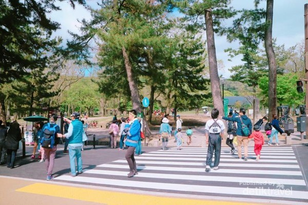 Jalanan di depan Nara Park, meskipun ramai tetap tertib