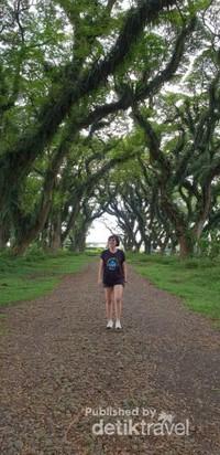 Berjalan-jalan menikmati keindahan dan kesejukan udara De Djawatan