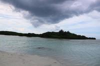 Suasana pemandangan pantai  dengan latar belakang hutan pohon bakau dan tanaman pantai lainnya saat langit mendung di Pantai Pasir Perawan