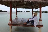 Gazebo dengan latar belakang pemandangan pantai yang menenangkan
