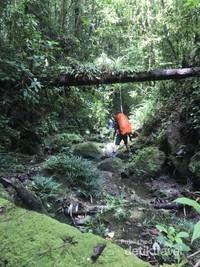 melewati sungai ditengah hutan yang lebat