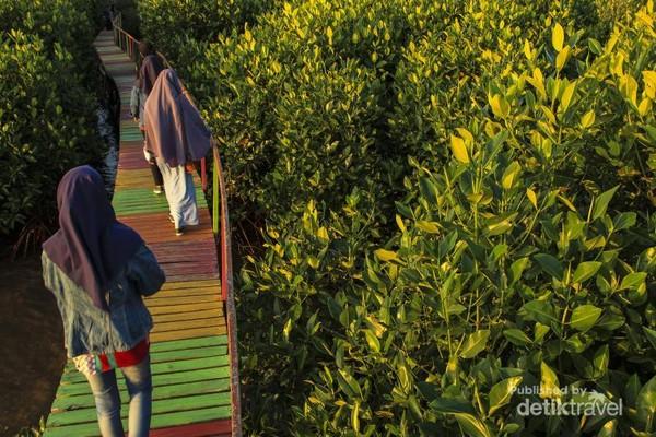 Kebanyakan pengunjung adalah warga lokal Makassar yang sering menghabiskan sore harinya di lokasi ini.