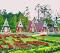 Rumah Pagupon yang siap untuk disewakan sekaligus pemandangan foto yang cantik