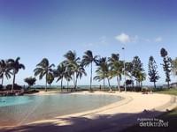 Dari Airlie Beach Anda dapat mengikuti wisata siang ke hutan hujan, air terjun, dan lubang berenang. Atau cobalah jalan kaki lintas hutan semak, terjun bebas, paralayang, menunggang kuda, memancing, berkayak di laut, dan berlayar ke pulau-pulau  Whitsunday