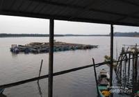 Lanskap bagang dan perahu