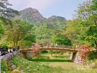 Jembatan kayu berukir khas Korea yang berlatar pemandangan indah puncak-puncak Gunung Soerak.