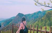 Nikmati pemandangan puncak-puncak Gunung Soerak yang didominasi bebatuan dan hutan pinus hingga berbagai jenis pohon rindang lainnya.
