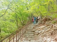 Jalur pendakian menuju puncak. Jalurnya cukup curam, sangat penting untuk tetap mengutamakan keselamatan.