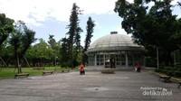 Botanical garden menyimpan koleksi berbagai jenis tanaman pemakan serangga
