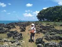 Perpaduan tanah bebatuan dan birunya lautan menjadikan setiap spot Kahuripan Intagrammable