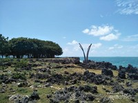 Panasnya angin yang dihasilkan akan tertutupi dengan banyaknya pohon disepanjang Pantai Kahuripan.