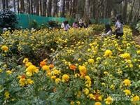 Kawasan wisata Coban Talun berada di Desa Tulungrejo, kota Batu, Malang Jawa Timur. Biaya masuk sebesar 10 ribu rupiah. Tapi ada banyak spot di sini. Salah satunya adalah kebun bunga warna warni.