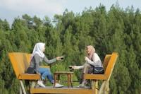 Bersantai menikmati kopi di kelilingi hutan pinus