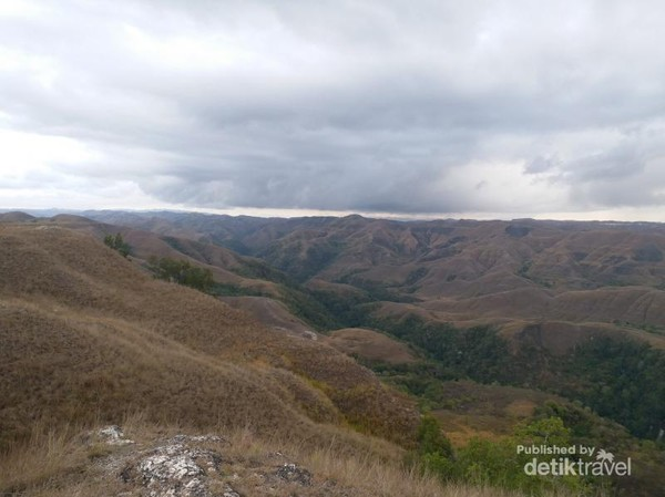 Luasnya Bukit Tanarara dengan kombinasi warna kuning dan hijau